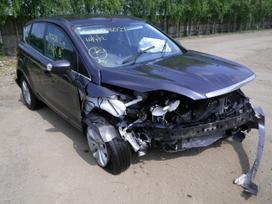 Ford Kuga. Angliskas automobilis 6begiu