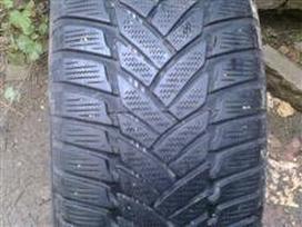 Dunlop Kaina nuo 20eur., Žieminės 175/65 R15