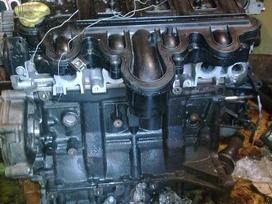 Renault Master. , variklis dalimis