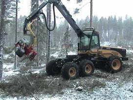 Eco Log, 590c, medkirtės