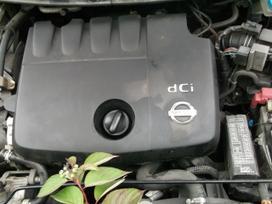 Nissan Primera. Nisan primera p12 1.9dci 88kw