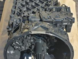 Renault Magnum vilkikai