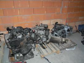 Honda Civic kėbulo dalys