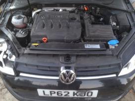 Volkswagen Golf. 1.6tdi 77kw clh, 11 tukst