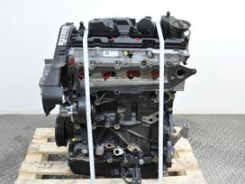 Volkswagen Passat. 1.6 tdi variklis oem: dcx