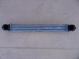 Fiat Doblo vandens radiatorius, ventiliatorius