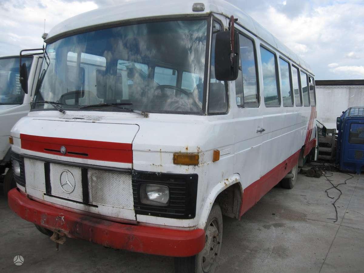Mercedes-Benz 0309, keleiviniai mikroautobusai