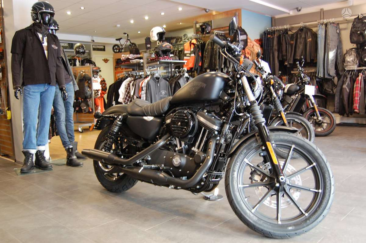 Harley-Davidson 883, Čioperiai / kruizeriai / custom