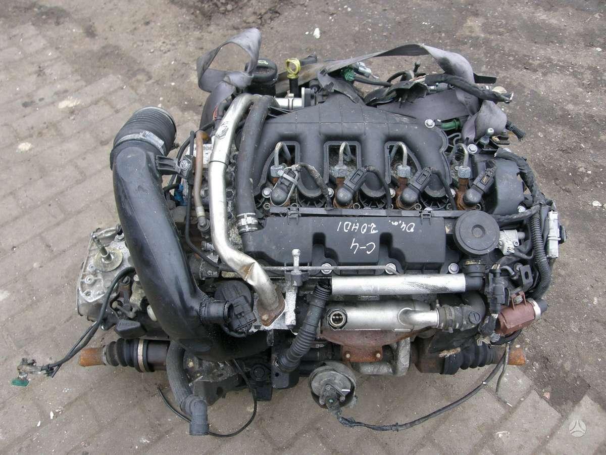 Citroen C4. Motoras su siemens  kuro sistema.