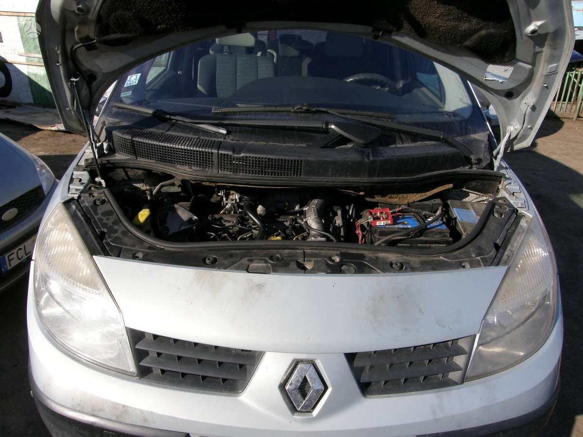 Renault Scenic. Auto dalimis