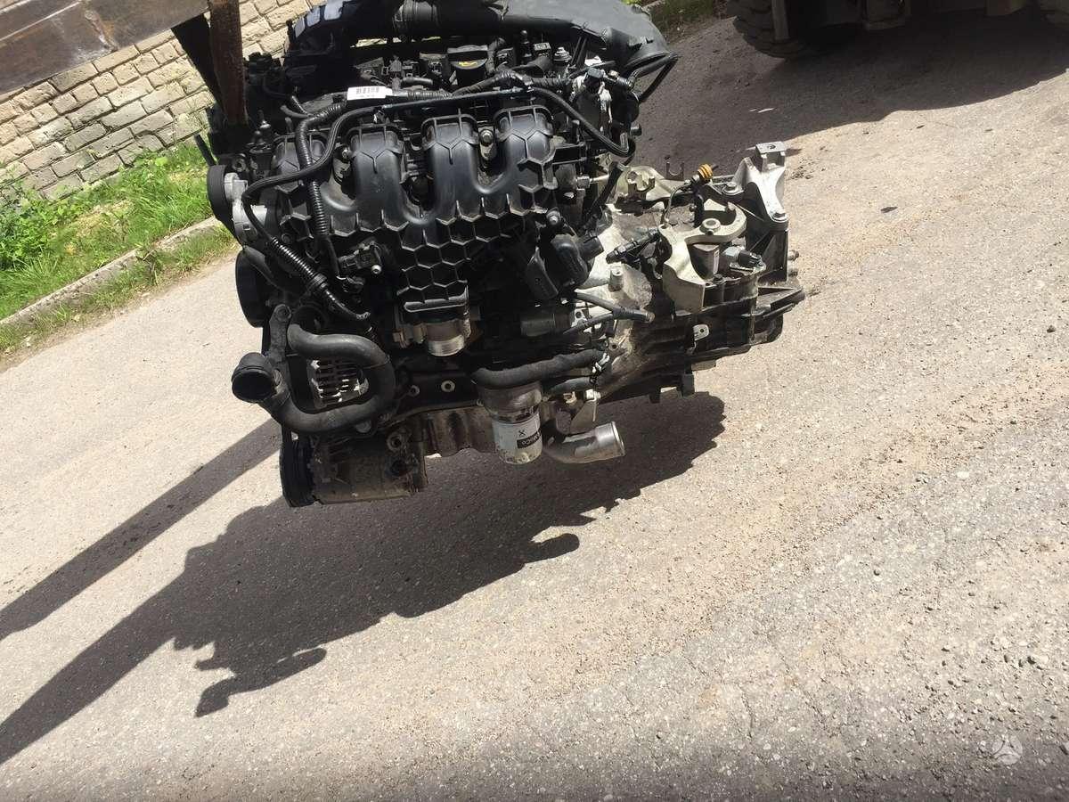 Ford Focus. Turime tik pilna varikli su pavaru deze.