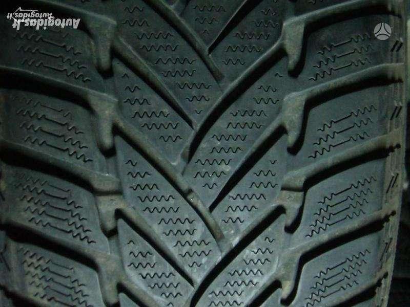 Dunlop, Žieminės 205/50 R17