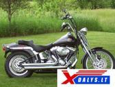 Harley-Davidson Springer, Čioperiai / kruizeriai / custom
