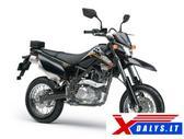 Kawasaki D-Tracker, krosiniai