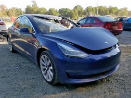 Tesla Model 3, hečbekas