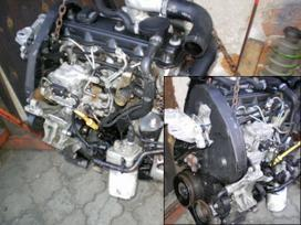 Ford Galaxy. 1.9 tdi 81 kw i 66 kw, tinka