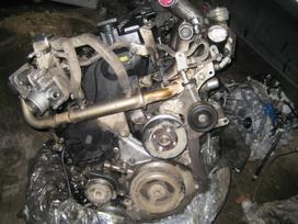 Nissan Pathfinder. Deze- korobka akpp1448
