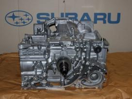 Subaru -kita-. Subaru dyzelinio variklio short blockai,  tarpinė