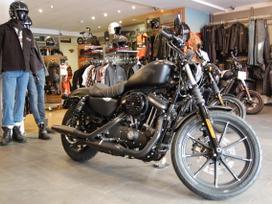 Harley-davidson 883 883cc, Čioperiai /