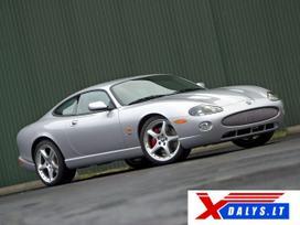 Jaguar Xk8 dalimis.   bene