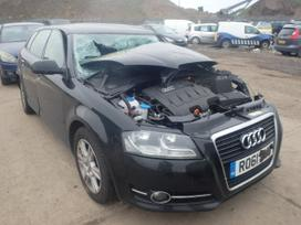 Audi A3. Audi a3 2011m 1,6 tdi 77kw dalimis