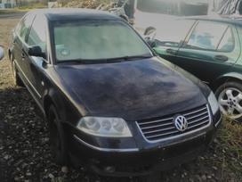 Volkswagen Passat. W  vw