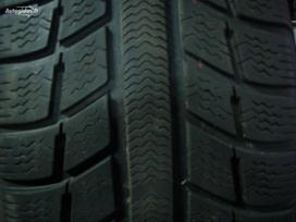 Michelin, Žieminės 175/65 R14