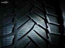 Dunlop, Žieminės 195/55 R15