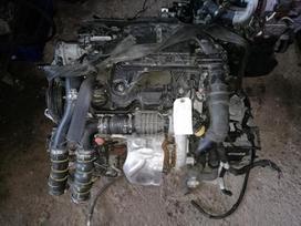 Peugeot 3008. 1.6 e-hdi 85kw variklis 9hd kodas rida 90000km