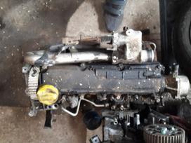 Renault -kita- variklio detalės
