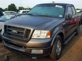 Ford F150 dalimis. Used and new parts for us