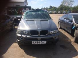 BMW X5. Xenon,yra subas gale