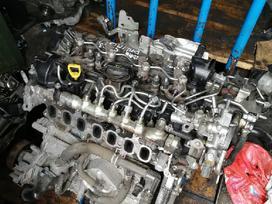 Mazda Cx-5. Variklis ir viskas aplink jį. biturbo