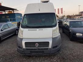Fiat Ducato, autobusai