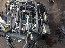 Lexus Nx klasė. 8ar variklys ir aprengimas
