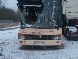 Setra S313 ul, autobusai