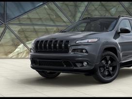 Jeep Cherokee. Automobilis dalimis  europa