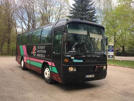 Mercedes-Benz O303, autobusai