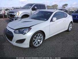 Hyundai Genesis dalimis. Auto is nuotraukos