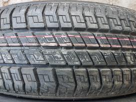 Michelin Pilot Hx, vasarinės 205/60 R15