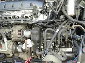 Volkswagen Multivan variklio detalės