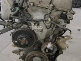 Suzuki Liana. 1.6b variklio kodas m16a tel