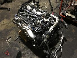 Bmw X6. Parduodu tik variklis dalimis x6m