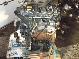 Opel Antara variklio detalės