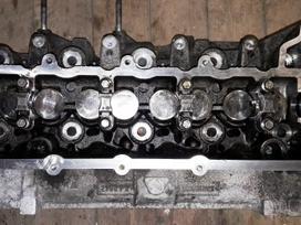 Nissan Juke variklio detalės