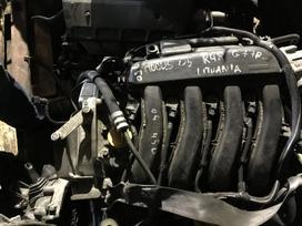Renault Modus. Variklis renault modus clio 3