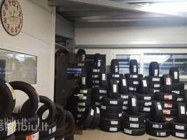 Michelin Collection Tubes Gree Max Winter,