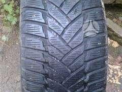 Dunlop, universaliosios 205/50 R15