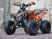 ATV Warrior, keturračiai / triračiai