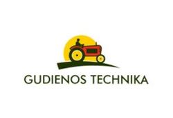 Gudienos technika